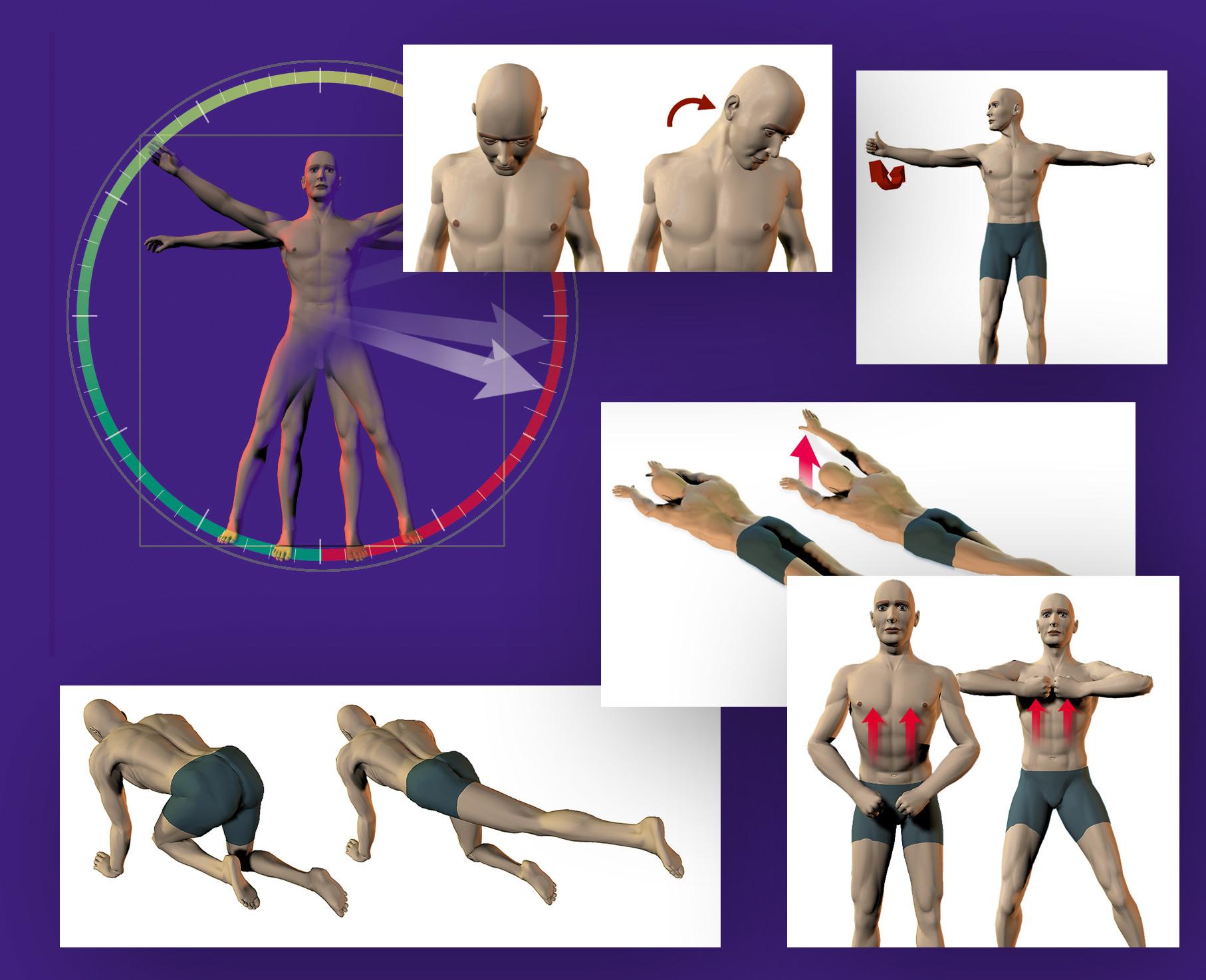 ilustracion-posturas