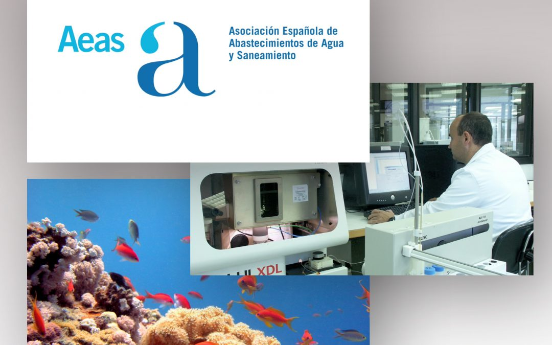 Vídeo | AEAS